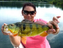 Private Fishing Gatun Lake